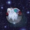 Pokemon NidoranM