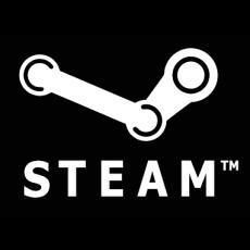 100€ Steam Guthaben